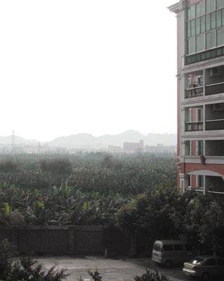 番禺の風景