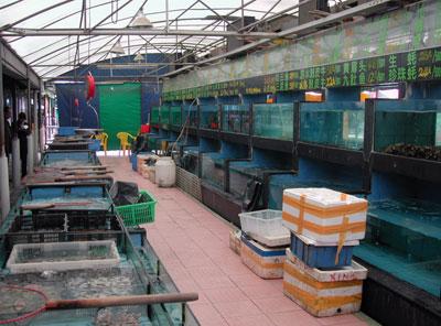 海鮮の水槽